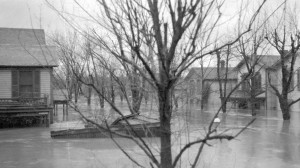 Hawthorn Street during the 1913 Flood