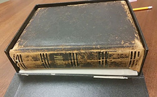 Wright Family Album in clamshell box: Leather spine is broken and very fragile with losses.